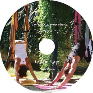 Yogaswing Instruction DVD